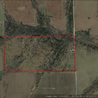 80 Acre Property