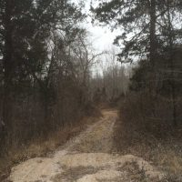 90 acres of mixed use recreational/hunting/developmental property located minutes from Fort Leonard Wood