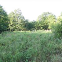 Bug-Out Camp Site near Kiamichi River in Pushmataha County, OK 3.88 AC at Jerusalem Loop Rd for 25900.0000