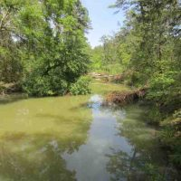 Timberland Investment, Recreational Hunting & Kiamichi River Front Property Pushmataha County, OK 1682 AC