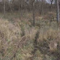 Hunting Land for Sale in Chautauqua County, KS