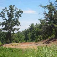 Recreational Hunting Property with Incredible Building Site in Bryan County, OK 65 AC