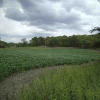 Hunting Land for Sale in Sullivan County, MO
