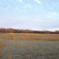 40 acre for sale Nowata  County, Ok