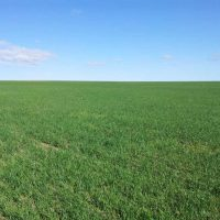 232 Acres For Sale in Labette County